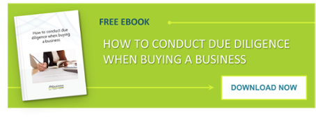 Download How to Conduct Due Diligence on a Business Purchase eBook